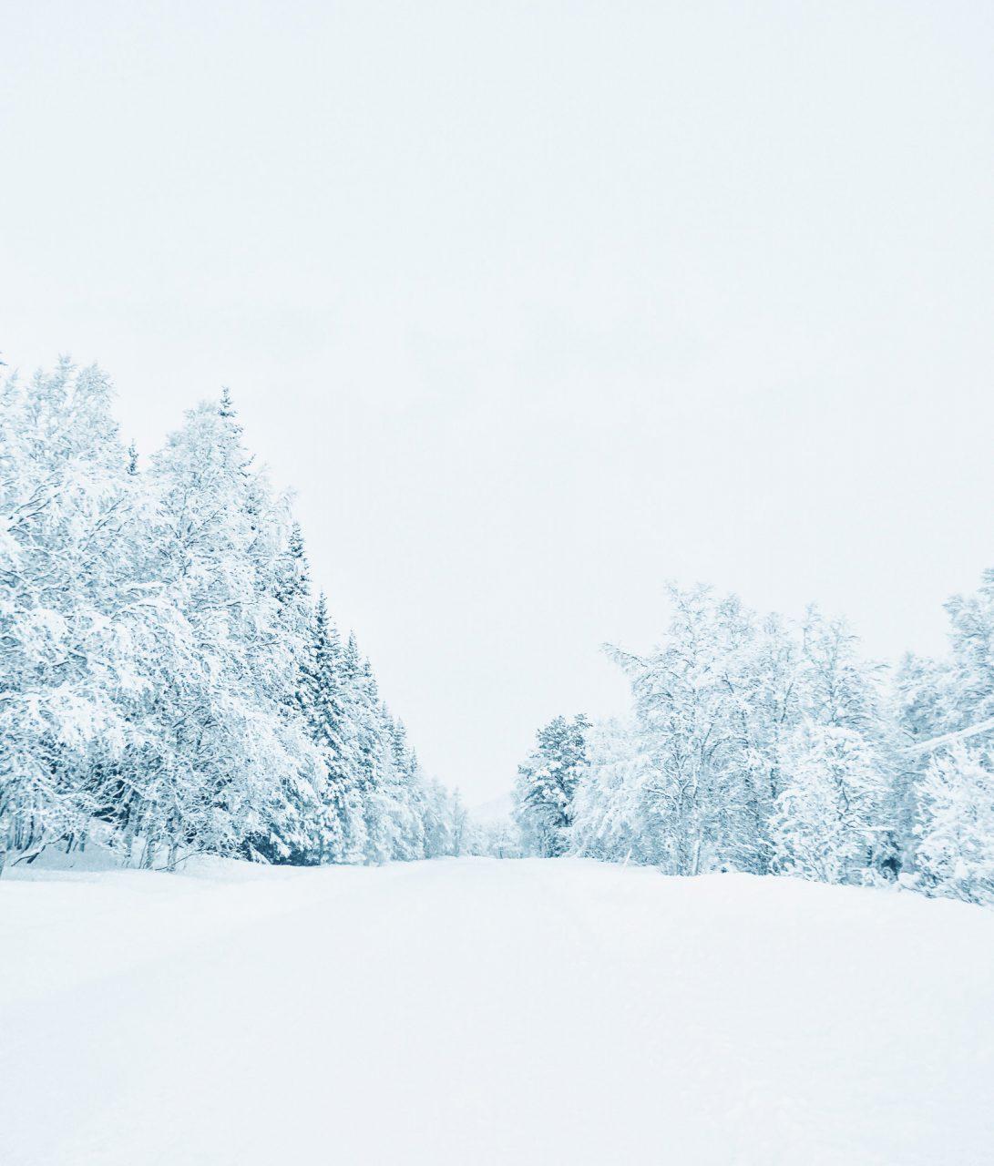 Eintauchen in endlose Schneelandschaft
