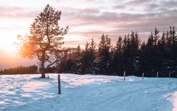 Kope – die Einladung auf den Wohnmobilstellplatz. Kope bei Slovenj Gradec, das Skigebiet, Wanderparadies und Mountainbike-Mekka (MTB) von Slowenien