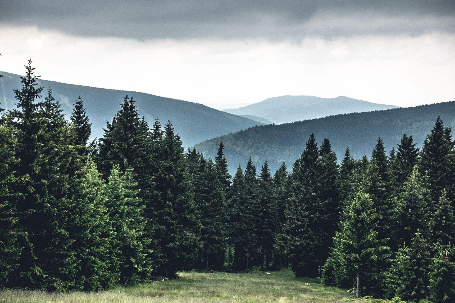Riesengebirge, aufsteigende Nässe