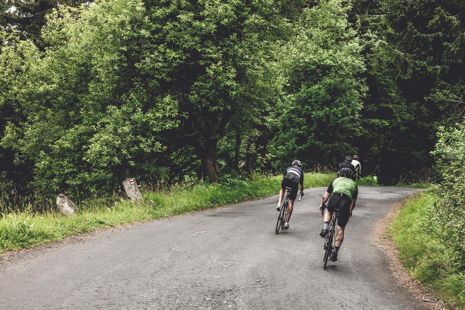 Mein Job für den nächsten Trip – mit dem Mountainbike auf den Medvedin
