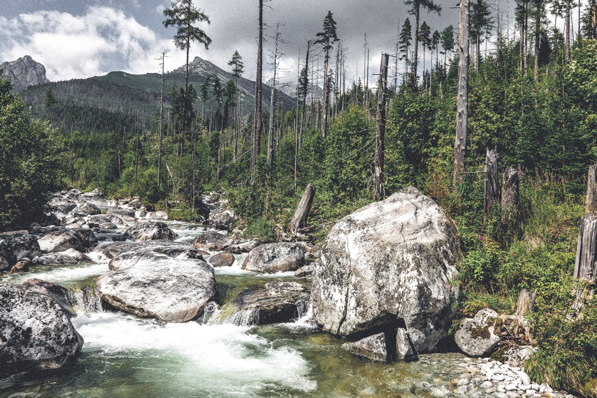 Wilde Romantik in der Hohen Tatra, Slowakei